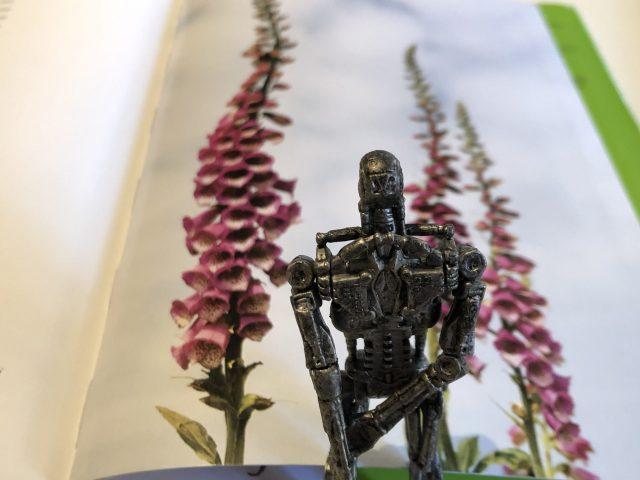 T-800 (8)_Il giardino di Derek Jarman_Libri Senza Gloria