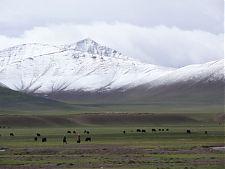 Llanuras del Tibet e Himalayas