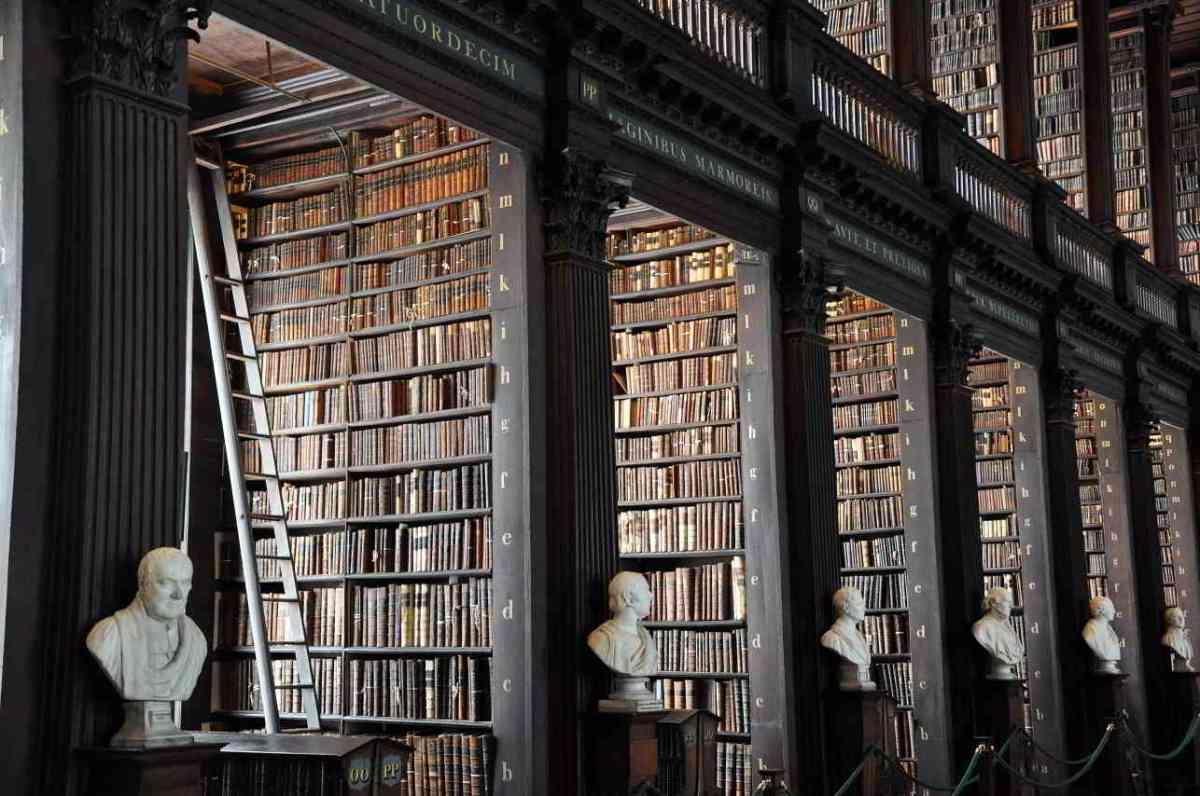 Biblioteca Irlanda