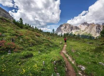 Los beneficios de caminar y del senderismo