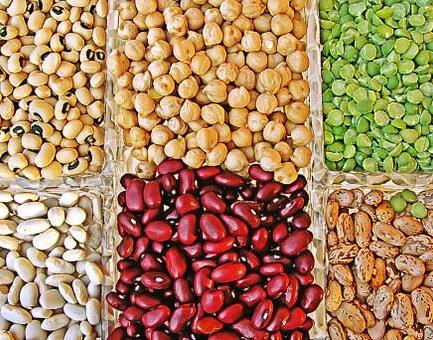 Los beneficios terapéuticos de las legumbres