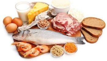 la importancia de las proteínas
