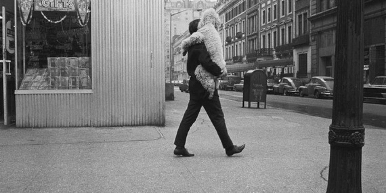 Joel Meyerowitz, el fotógrafo de la Quinta Avenida