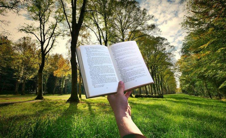 Leer en verano, la estación de las lecturas demoradas (I)