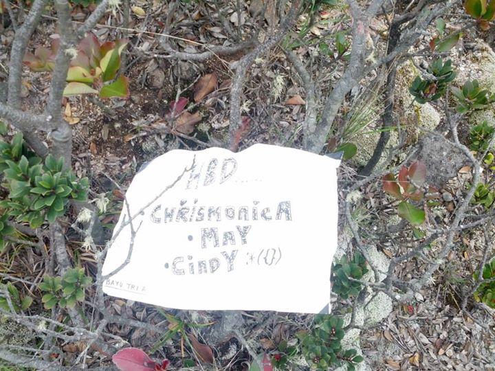 Jadi sampah kertas ini hadiah ulang tahun kalian pada alam?