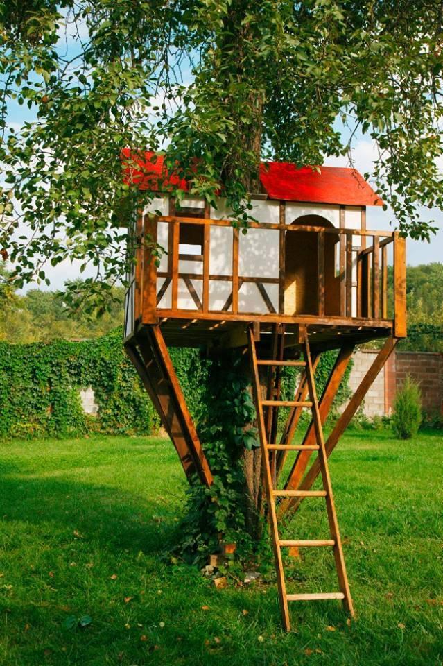 Rumah Pohon Di Halaman Sendiri? Kenapa tidak!