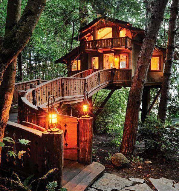 Rumah pohon luar biasa!