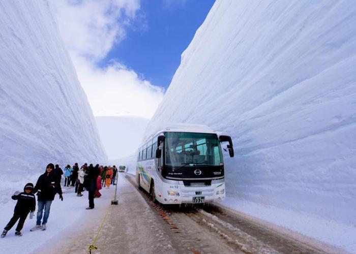 Melihat Salju Musim Semi Jepang, Di Tateyama Kurobe Alpine Route.