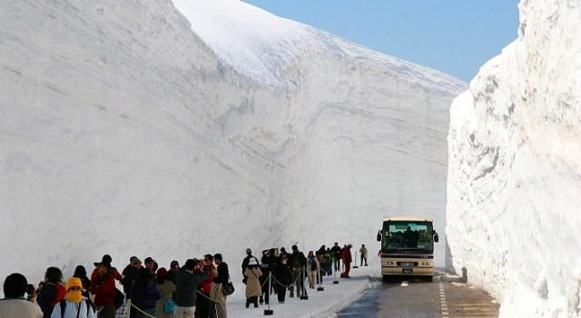 Selama musim semi, Tateyama Kurobe akan di penuhi oleh turis dari berbagai negara.