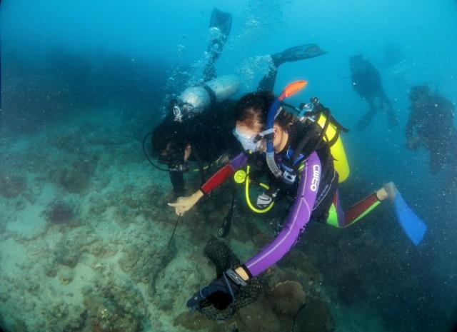 Menyelam di Kepulauan Seribu, Jakarta