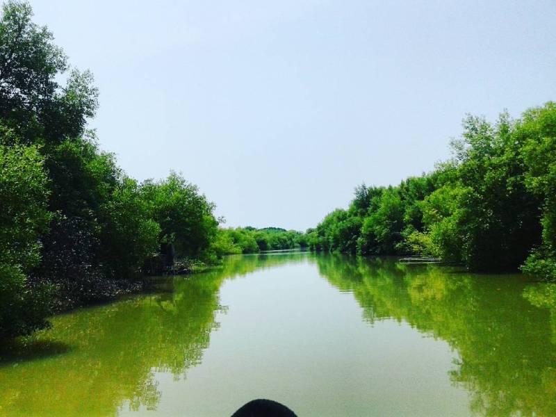 Mangrove di dekat Pantai Muara Beting, mirip di sungai amazon bukan?