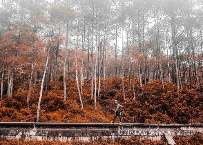 Gunung Puntang adalah salah satu tempat wisata gunung keren di Bandung
