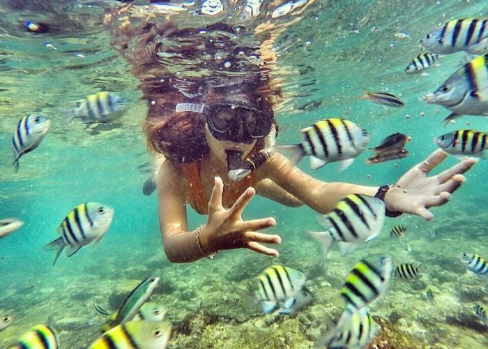 Siapa bilang di Jogja tidak bisa snorkeling! Itu artinya kamu belum mampir ke Pantai Nglambor! via IG @non_cindy_warwer24