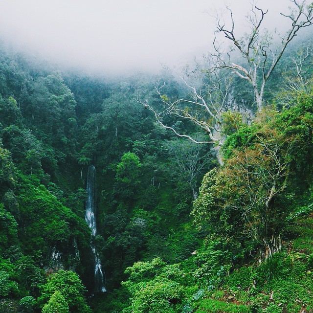 Yakin kalian nggak mau liburan ke Parang Tejo, air terjun di Malang yang keren ini via @aryanidevi