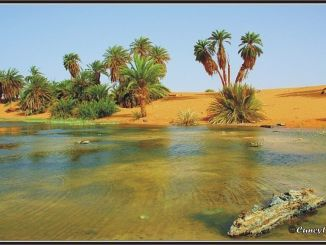 واحة الكفرة الليبية