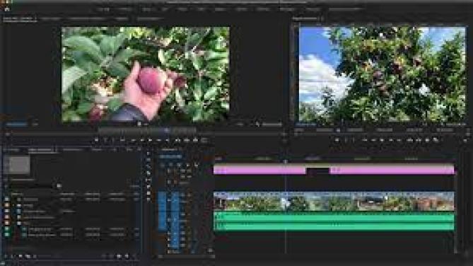 Adobe Premiere Pro Crack 2021 Professional video editor & video maker Download Free