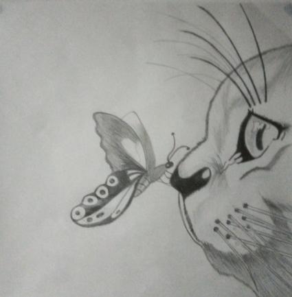 dibujo de gato con mariposa en su nariz