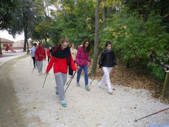 nordic_walking_3b 2011-12