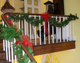 Christmas at Erasmus Darwin House
