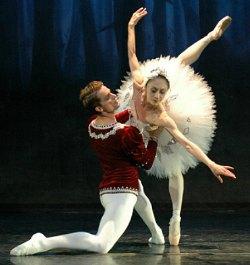 The Vienna Festival Ballet