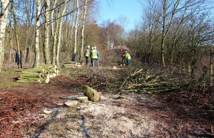 Volunteers working in Darnford Park