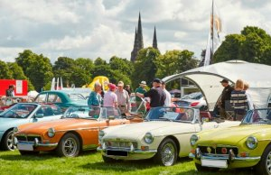 Cars in the Park. Pic: Robert Yardley