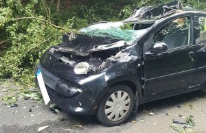 Damage to the car hit by a tree branch near Gentleshaw