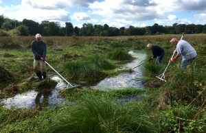 Volunteers at work clearing watercress from Leomansley Brook