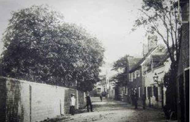 Old-Shenstone
