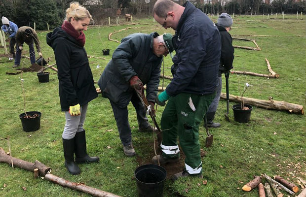 The Peace Woodland being planted