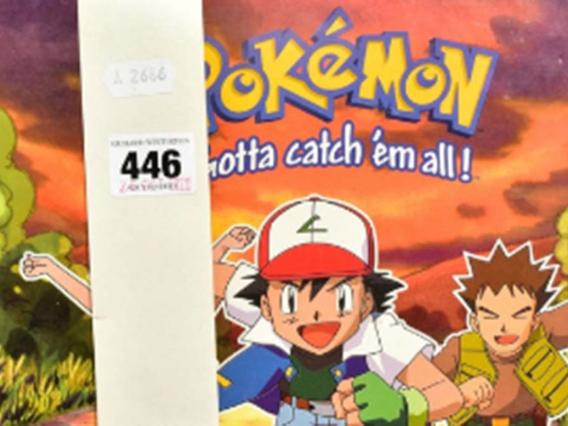 The Pokemon folder