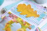 09.что можно написать в личном дневнике
