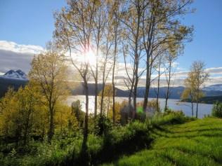 Noorwegen 184