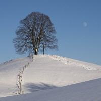 Verschneiter Mond