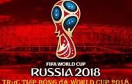Cá độ bóng đá World Cup lãi hay lỗ?