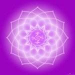 violette-flamme