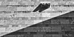 Werner Matzen - Licht + Schatten