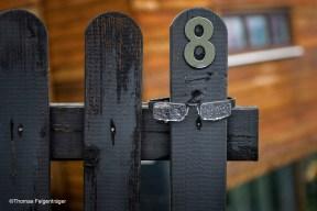fence glasses