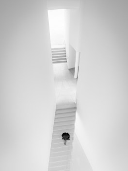 Steffen Mahler - Stairs into the Light BW