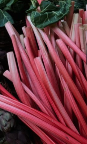 Rhubarb at market