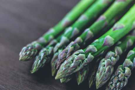 asparagus bunch bundle close up