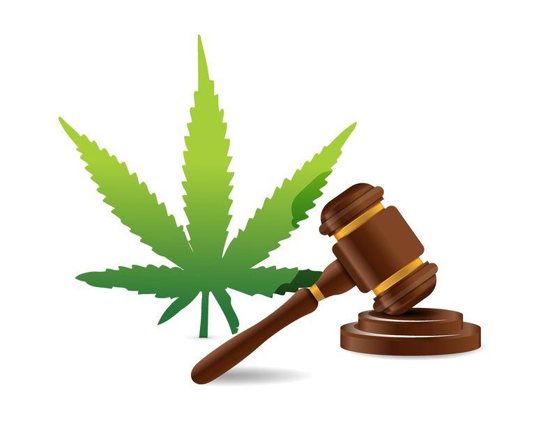 New York's Medical Marijuana