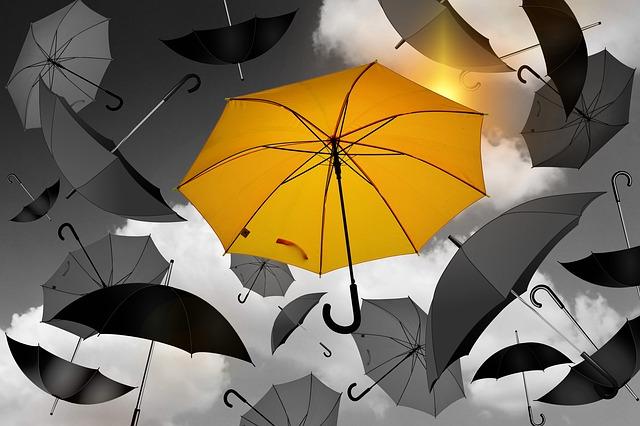 Los mejores paraguas, las fundas más originales y los accesorios más útiles