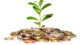 Заявки на участие в V фазе программы инвестиционных грантов «Упрощение доступа к рынкам сбыта» принимают до 19 мая