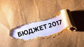 Бюджет-2017: нюансы господдержки аграриев