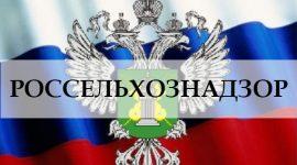 Россия усилила контроль мяса, поставляемого из Молдовы
