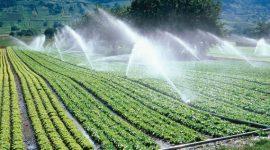 Utilizarea apelor subterane în R.Moldova pentru irigarea terenurilor agricole