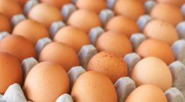 В I КВАРТАЛЕ СЕЛЬХОЗПРОИЗВОДСТВО ВЫРОСЛО НА 1% В Молдове в I квартале 2018 г. отмечен рост валовой продукции сельского хозяйства, при этом увеличилось производство мяса и молока, но сократилось произ- водство яиц.