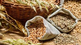 Прогноз мирового производства зерновых в 2017/18 МГ повышен до 2,6 млрд. тонн