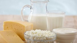 Молдова намерена вернуть право экспортировать молочные продукты на европейский рынок